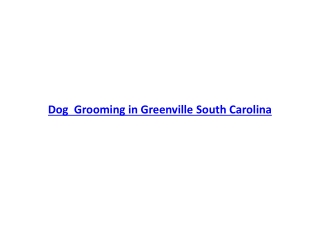 Dog Grooming in Greenville South Carolina