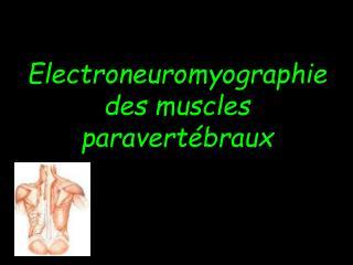 Electroneuromyographie des muscles paravert braux