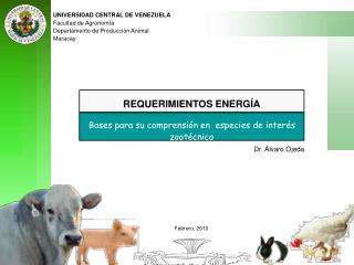 UNIVERSIDAD CENTRAL DE VENEZUELA Facultad de Agronom a  Departamento de Producci n Animal Maracay