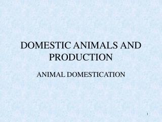 domestic animals and production
