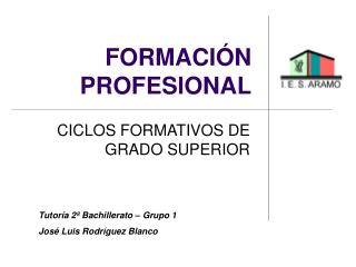 FORMACI N PROFESIONAL