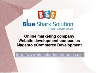 Magento ecommerce Development to enhance on internet busines