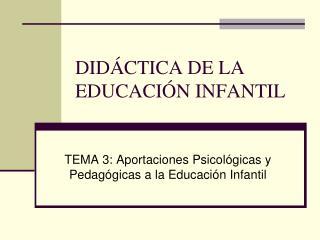 DID CTICA DE LA EDUCACI N INFANTIL
