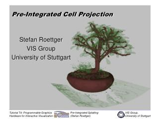 Pre-Integrated Cell Projection