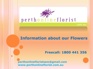 Perth Online Florist - Arrangements