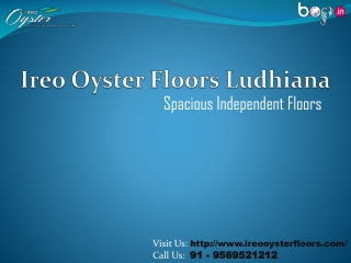 Ireo Oyster Floors Ludhiana