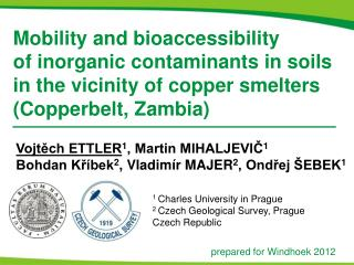 Mobility and bioaccessibility of inorganic contaminants in soils in the vicinity of copper smelters Copperbelt, Zambia