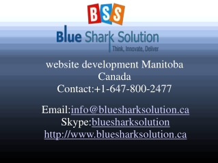 Website development Manitoba – increase your online trends