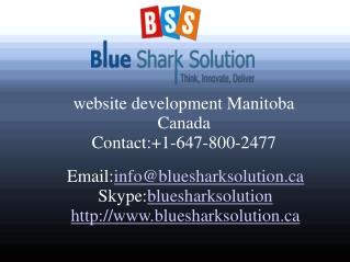 Website development Manitoba – increase your online trends