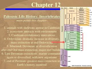 Paleozoic Life History: Invertebrates main points this chapter-  1. animals with skeletons appear in Cambrian 2. ecosyst