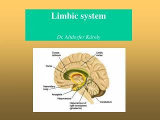Limbic system  Dr. Altdorfer K roly