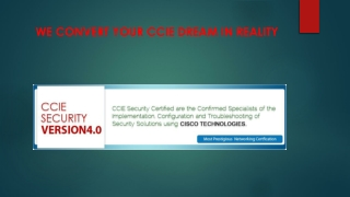 CCIE Training Institute