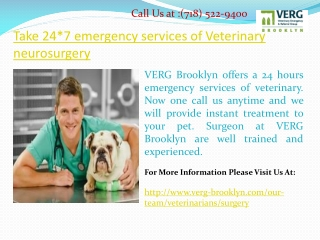 Take 24*7 emergency services of Veterinary neurosurgery