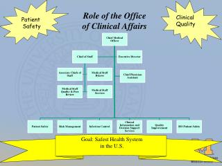 Role of the Office  of Clinical Affairs
