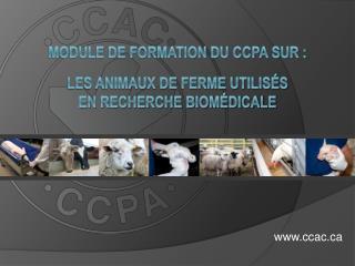 Module de formation du CCPA sur :  les animaux de ferme utilis s  en recherche biom dicale