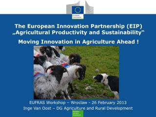 The European Innovation Partnership EIP  Agricultural Productivity and Sustainability   Moving Innovation in Agriculture