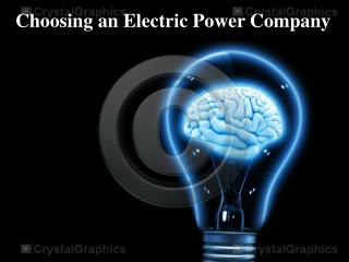 Choosing an Electric Power Company