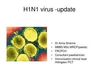H1N1 virus -update