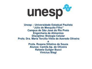 Unesp   Universidade Estadual Paulista   J lio de Mesquita Filho  Campus de S o Jos  do Rio Preto Engenharia de Alimento