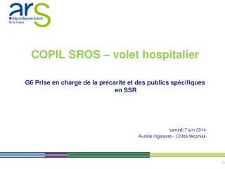 COPIL SROS   volet hospitalier  G6 Prise en charge de la pr carit  et des publics sp cifiques en SSR   vendredi 22 novem