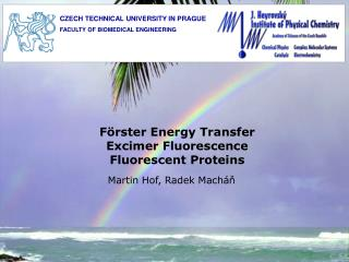 F rster Energy Transfer Excimer Fluorescence Fluorescent Proteins