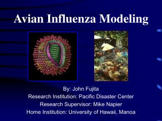 Avian Influenza Modeling