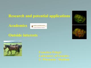 Research and potential applications  Academics  Outside interests