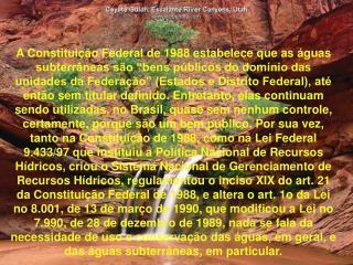 A Constitui  o Federal de 1988 estabelece que as  guas subterr neas s o  bens p blicos do dom nio das unidades da Federa