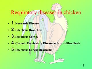 Respiratory diseases in chicken