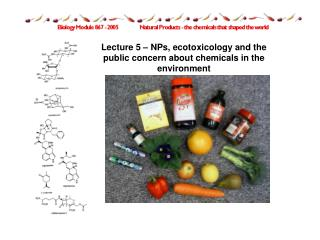 Lecture 5   NPs, ecotoxicology and the public concern about chemicals in the environment