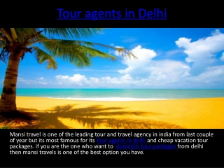 Tour agents in Delhi