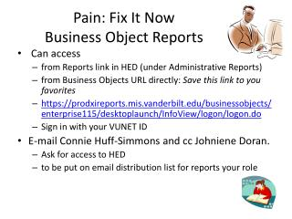Pain: Fix It Now  Business Object Reports