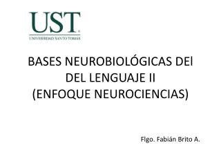 BASES NEUROBIOL GICAS DEl DEL LENGUAJE II ENFOQUE NEUROCIENCIAS