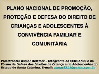 PLANO NACIONAL DE PROMO  O, PROTE  O E DEFESA DO DIREITO DE CRIAN AS E ADOLESCENTES   CONVIV NCIA FAMILIAR E COMUNIT RIA