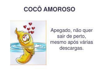COC  AMOROSO