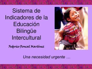 Sistema de Indicadores de la Educaci n Biling e Intercultural