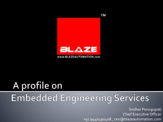Blaze Embedded services Presentation Nov 2013