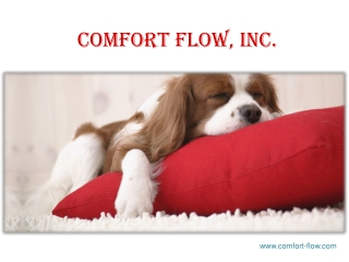 Orthopedic dog beds for large dogs in USA