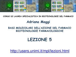 BASI MOLECOLARI DELL AZIONE DEL FARMACO BIOTECNOLOGIE FARMACOLOGICHE   LEZIONE 5
