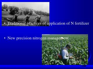 N Fertilization in Colorado