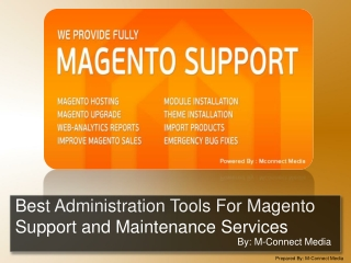 Best Rated Administration Tools For Magento Support Services