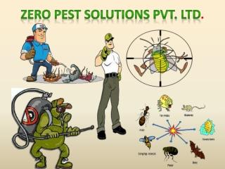 Termite Controller- Zero Pest Solutions