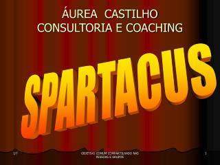 UREA  CASTILHO CONSULTORIA E COACHING