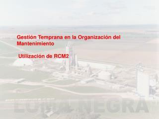 Gesti n Temprana en la Organizaci n del Mantenimiento   Utilizaci n de RCM2