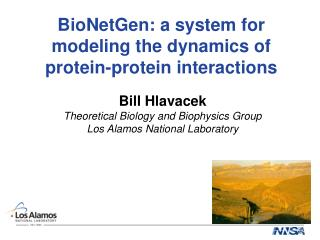 BioNetGen: a system for modeling the dynamics of protein-protein interactions