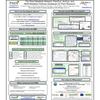 The Plant Metabolic Network: PlantCyc, AraCyc, and NEW Metabolic Pathway Databases for Plant Research