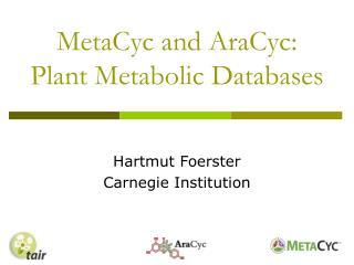 MetaCyc and AraCyc:  Plant Metabolic Databases