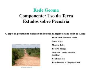Rede Geoma Componente: Uso da Terra  Estudos sobre Pecu ria