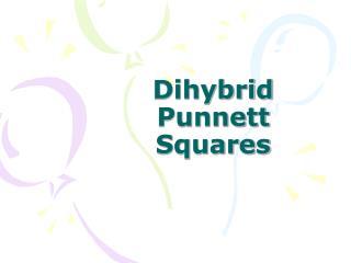 Dihybrid Punnett Squares