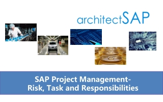 SAP Project Management- Risk, Task and Responsibilities
